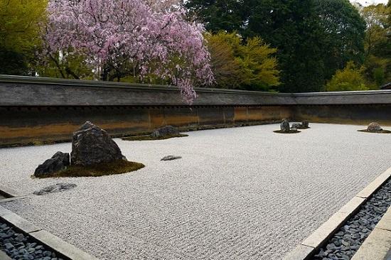20150216-285-30-kyoto-Cherry-blossoms