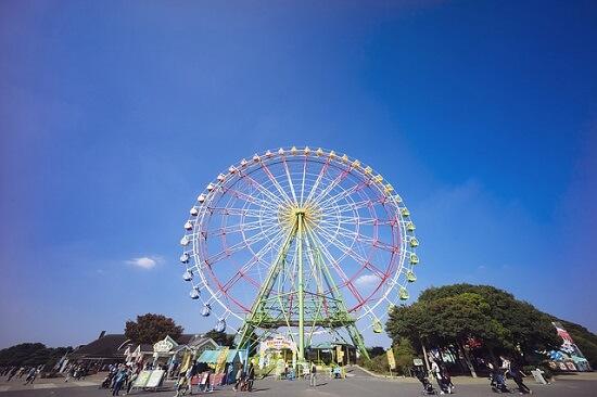 20150325-324-2-Hitachi-Seaside-Park-Japan