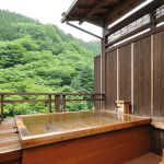 20141231-240-2-shimaonsen