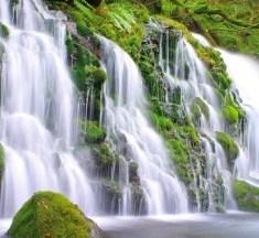 眺めているだけで癒される!世界に誇る日本の美しい滝7選。
