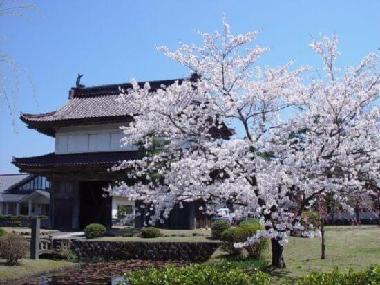 20160505-698-31-sakata-kanko