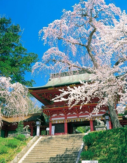 20160527-713-10-shiogama-kanko