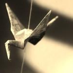 文具 折り紙 インテリア ショップ アート