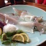 いか 海鮮 刺身 食事 和食