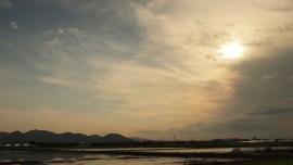 岡山 Rizière à Okayama