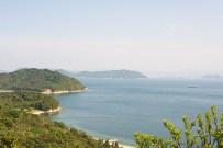 Vue de haut de l'île avec la citrouille