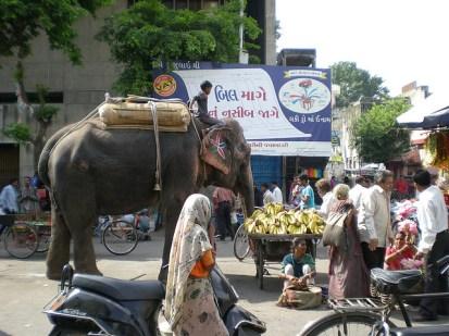Les gens achètent des bananes et offrent à l'éléphant.