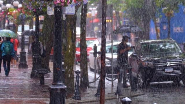 雨の日の風景
