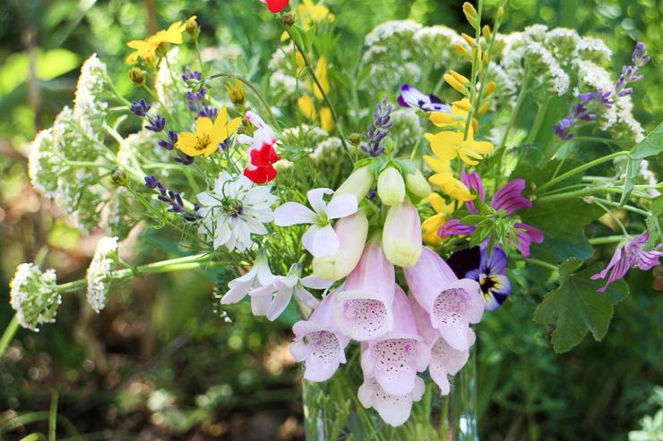 庭の花を花瓶に生けて