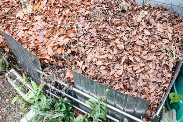 落ち葉たい肥 家庭菜園