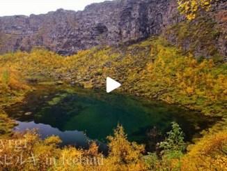 【TOP BUZZ】アイスランド アゥスビルギ Iceland Asbyrgi