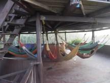 Hammocks in the hut
