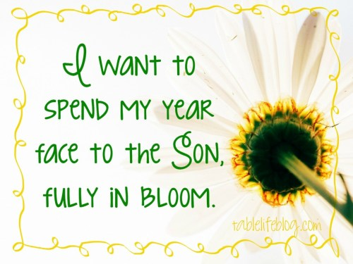 2016 Word of the Year - Bloom