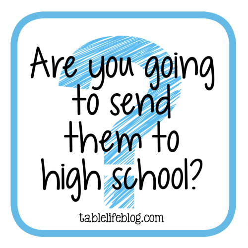 Homeschool Questions I'm Often Asked - Are you going to send them to high school?
