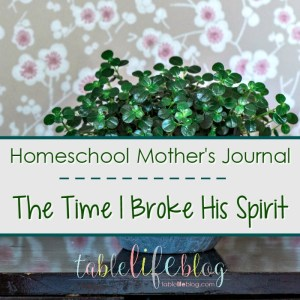 Homeschool Mother's Journal: The Time I Broke His Spirit