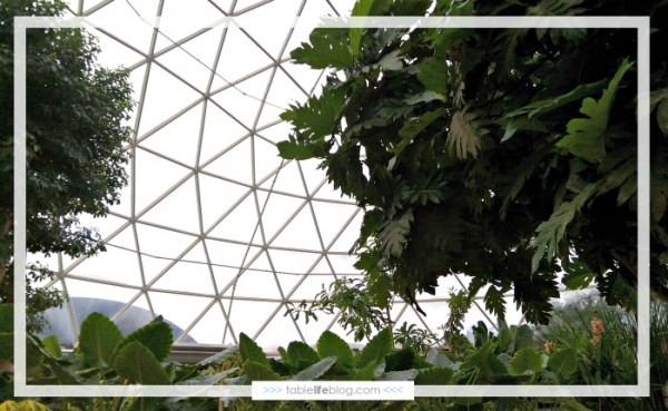 10 Must-Dos for Homeschooling at EPCOT - Living with the Land