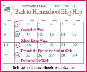 Homeschooling 2nd Grade: Our 2018-2019 Curriculum Choices