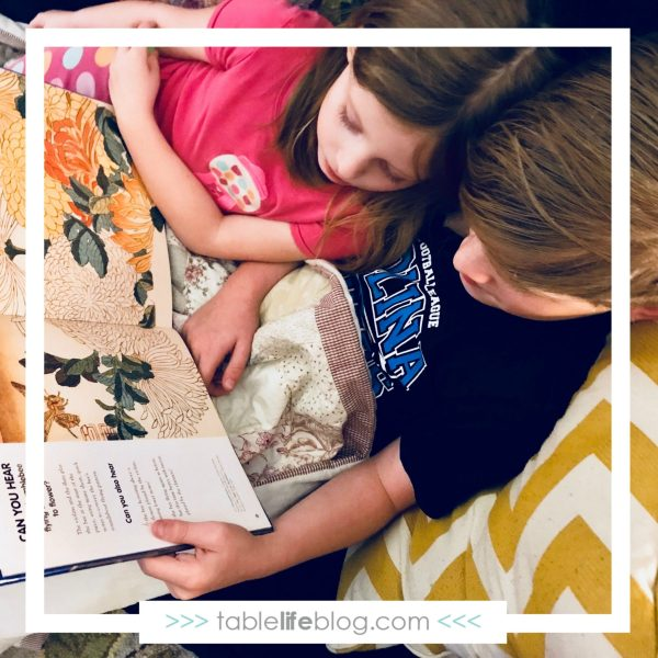 How to Choose Books for Your Homeschool
