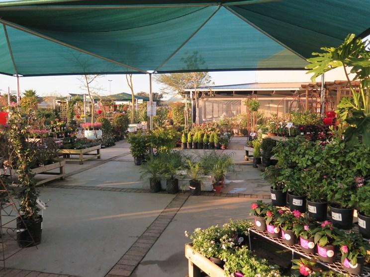 Starke Ayres Garden Centre West Coast Village nursery landscaping flowers plants soil seeds outside