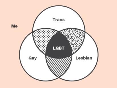 venn diagram LGBT