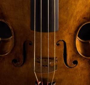 baroque viola for sale