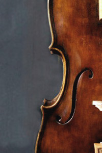 Maggini baroque viola