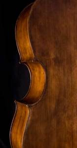 Violoncello willow back