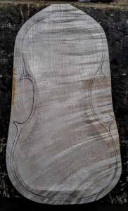 Storioni violin back plate