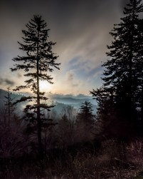 Tabula Rasa Photography Pictures of Yellowstone - Fall 2017
