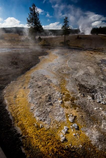Yellowstone-5086