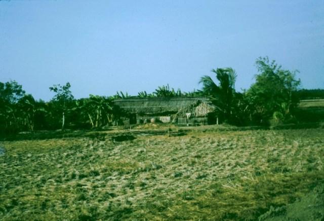 Một ngôi nhà ở miền quê Long An.