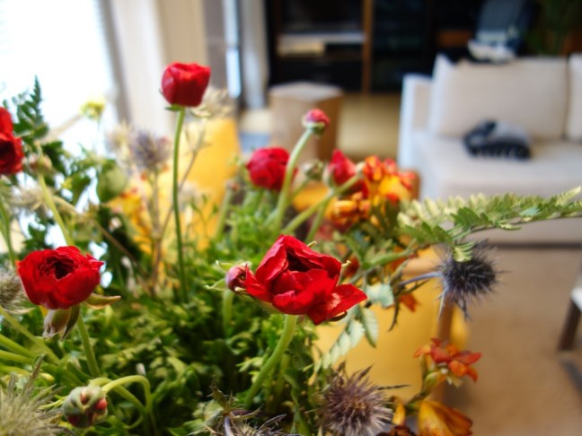 tache de rousseur new in 2 fleurs
