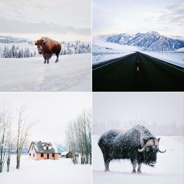instagram_alex_strohl