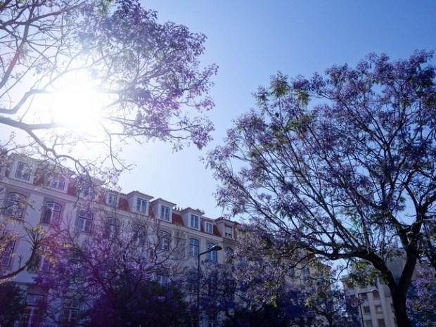 Blog Tache de Rousseur - Lisbonne juin 2015-4