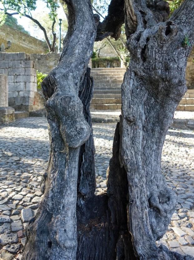 Blog Tache de Rousseur - Lisbonne juin 2015-88
