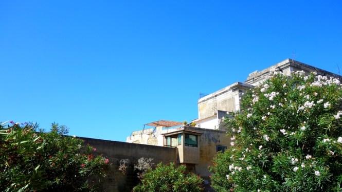 Tache de Rousseur - Voyage à Procida (Naples) (13)