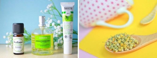 Tache de Rousseur - Mes blogs Green préférés - Shakermaker articles