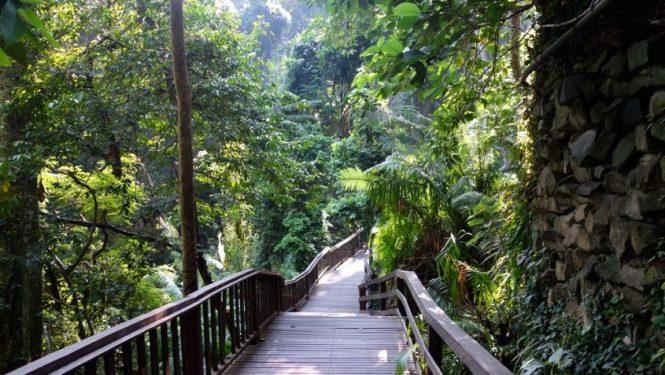 Voyage 1 mois en Indonésie - Ubud Bali