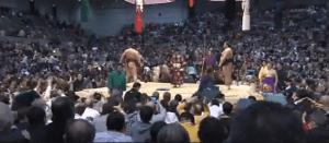Hakuho returns to the dohyo among flying zabuton