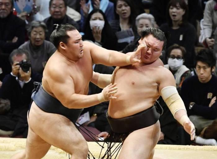sumo november 2016