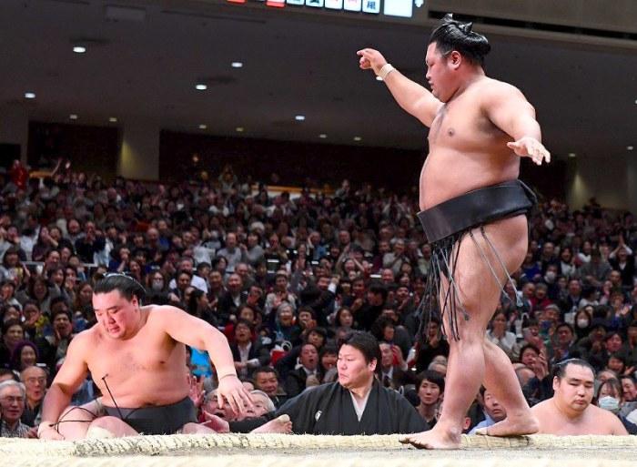 harumafuji-shohozan