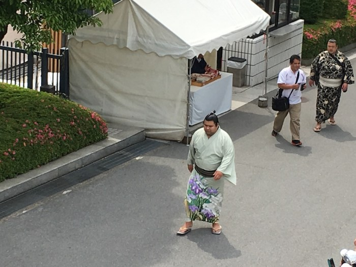 Takayasu Arrives