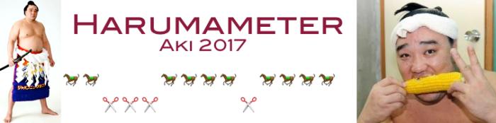 harumameter-day-14