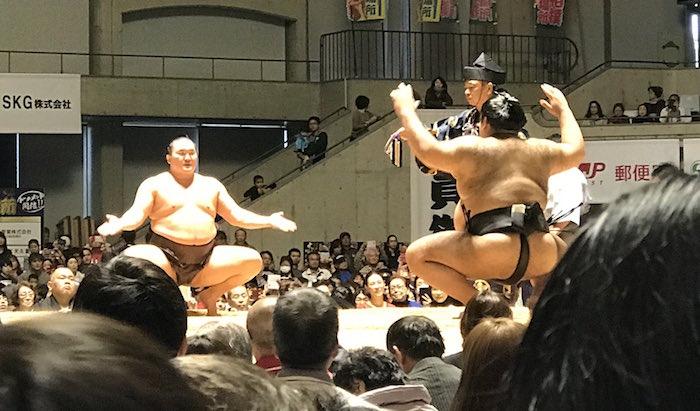 hakuho-takayasu