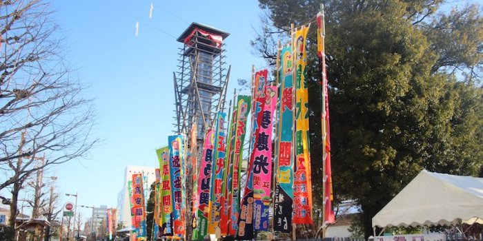 Hatsu Day 11