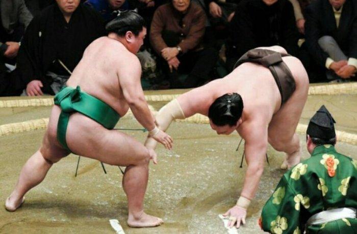 Hakuho-Down