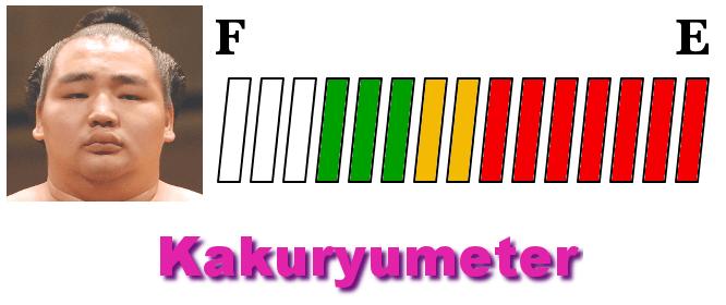 kakuryu-meter-hatsu-2018-day13