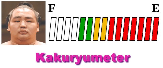 kakuryu-meter-hatsu-2018-day14