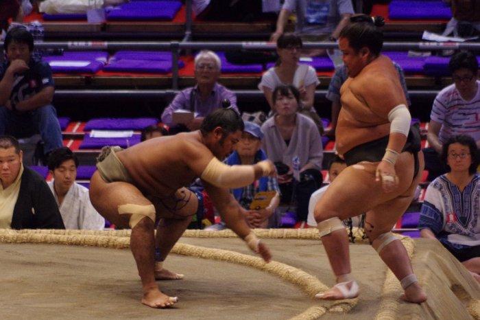 Wakaichiro day 14