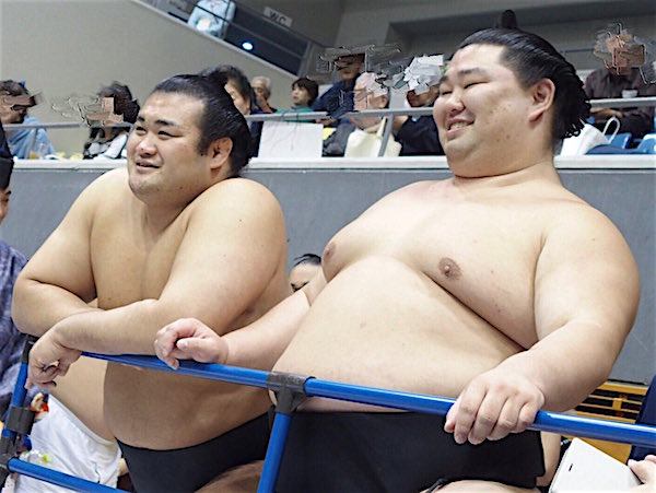 chiyonokuni-and-shodai